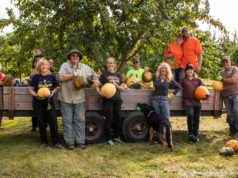 Cory Holman's Pumpkin Patch on the Old Mission Peninsula | Jane Boursaw Photo