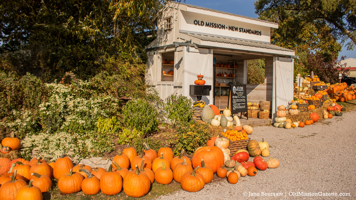 Pumpkins, gourds and squash at Local Yokels Farm Stand on the Old Mission Peninsula | Jane Boursaw Photo