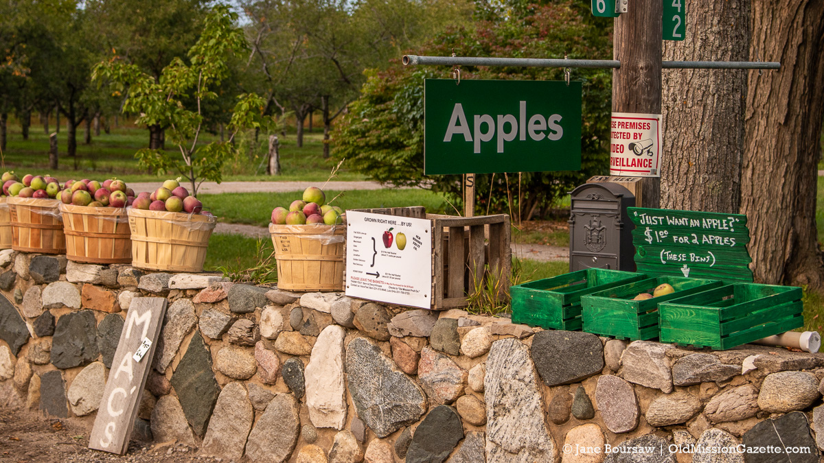 Bern Kroupa's apples on the rock wall across from Old Mission Tavern | Jane Boursaw Photo
