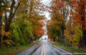 Fall Colors on the Old Mission Peninsula; Smokey Hollow Road looking north towards Ladd Road | Jane Boursaw Photo