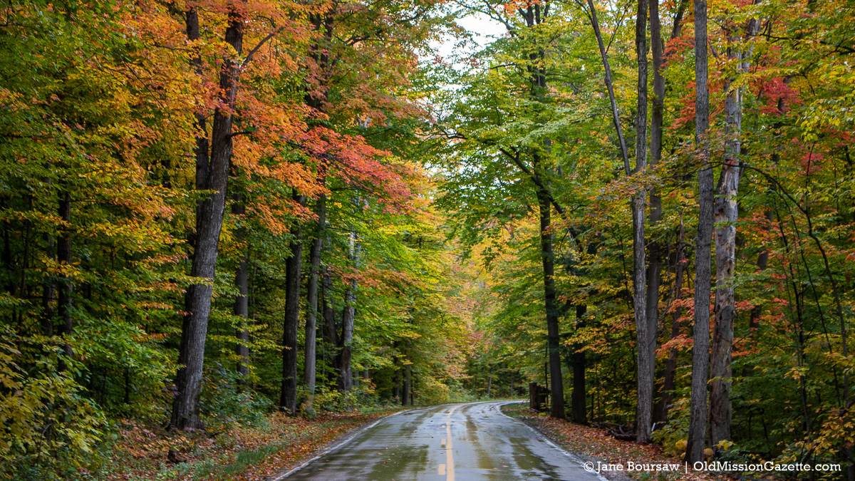 Fall Colors on the Old Mission Peninsula; Smokey Hollow road looking north towards Weatherholt's Farm | Jane Boursaw Photo