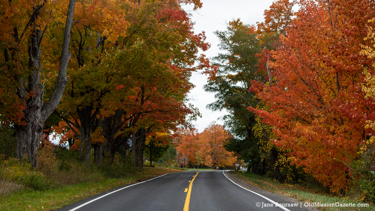 Fall Colors on the Old Mission Peninsula; Mission Road looking north towards the Old Mission General Store | Jane Boursaw Photo