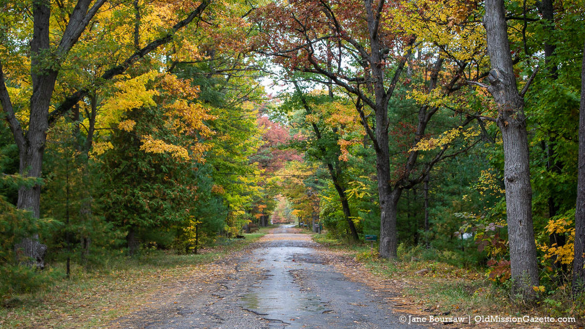 Fall Colors on the Old Mission Peninsula; Bay Street from the Haserot Beach side | Jane Boursaw Photo