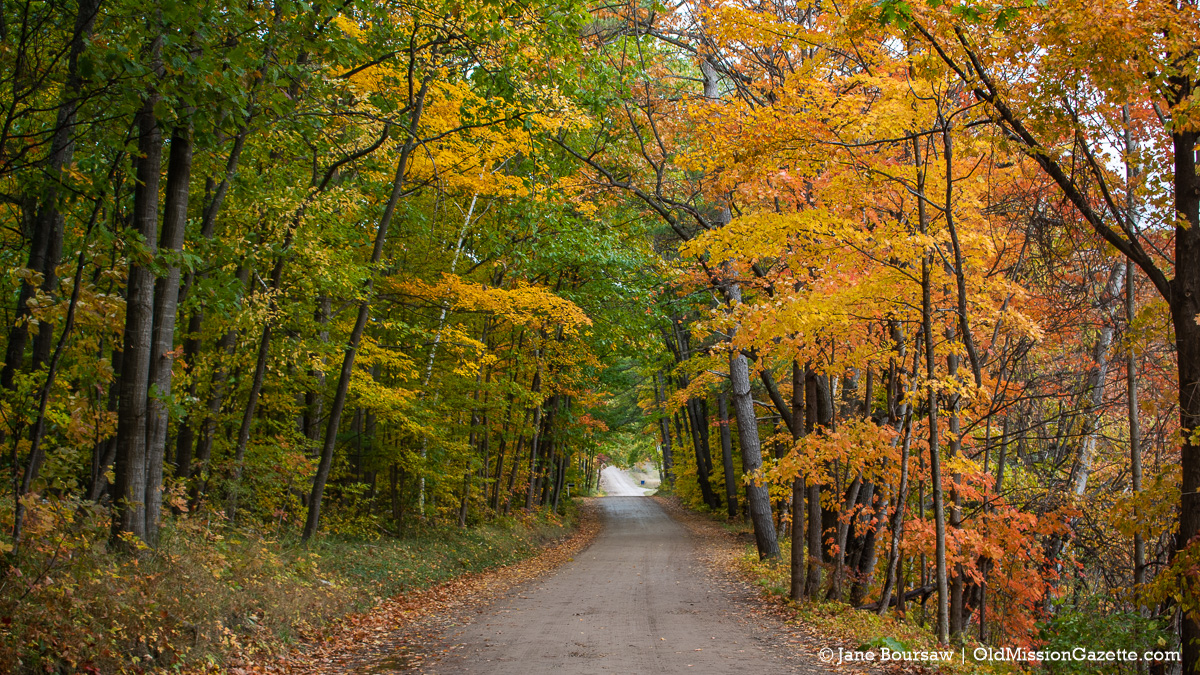 Fall Colors on the Old Mission Peninsula; Ridgewood Road looking north | Jane Boursaw Photo