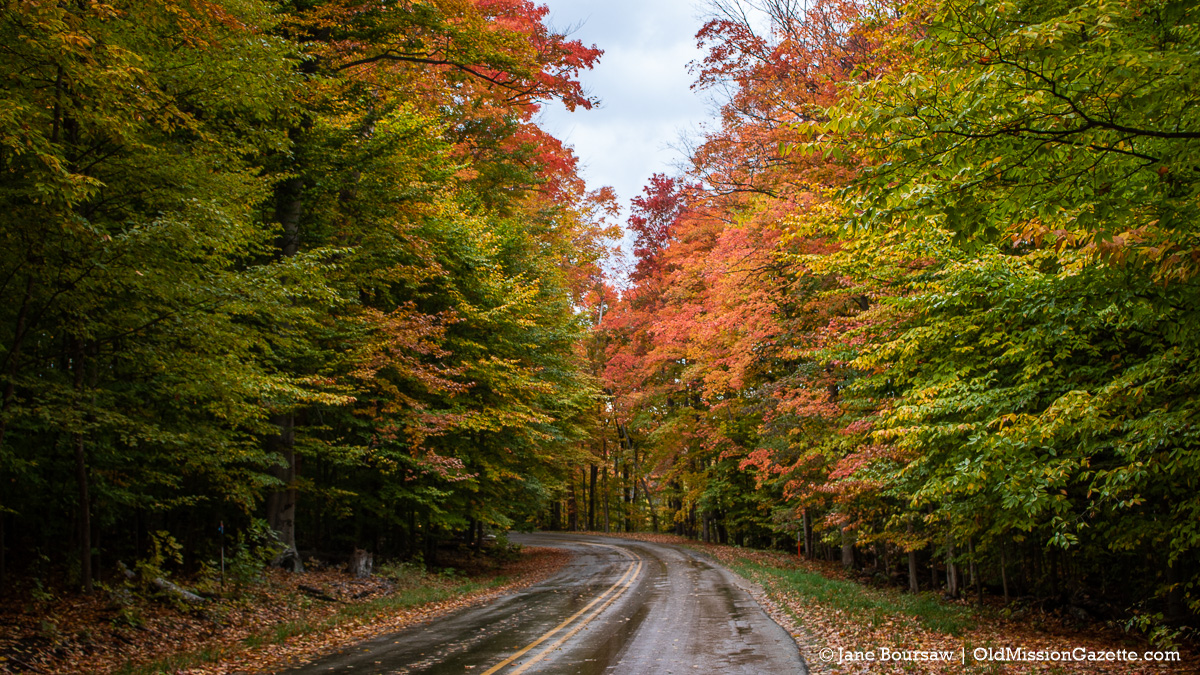 Fall Colors on the Old Mission Peninsula; Swaney Road looking west-ish | Jane Boursaw Photo