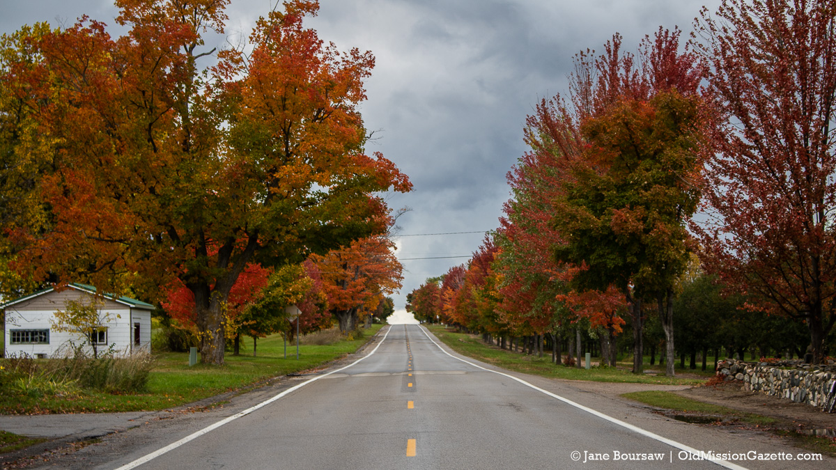 Fall Colors on the Old Mission Peninsula; Center Road looking north from Old Mission Tavern | Jane Boursaw Photo