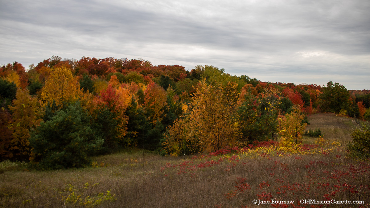Fall Colors on the Old Mission Peninsula; Center Road looking west from the Hogsback | Jane Boursaw Photo