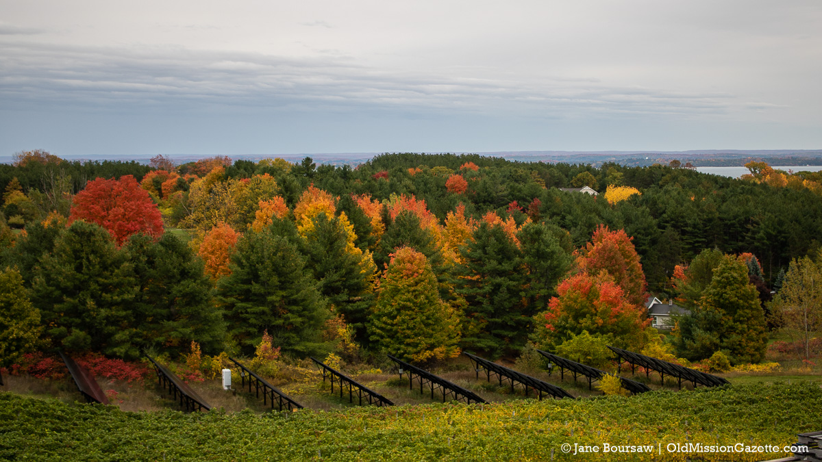 Fall Colors on the Old Mission Peninsula; Chateau Chantal looking east | Jane Boursaw Photo
