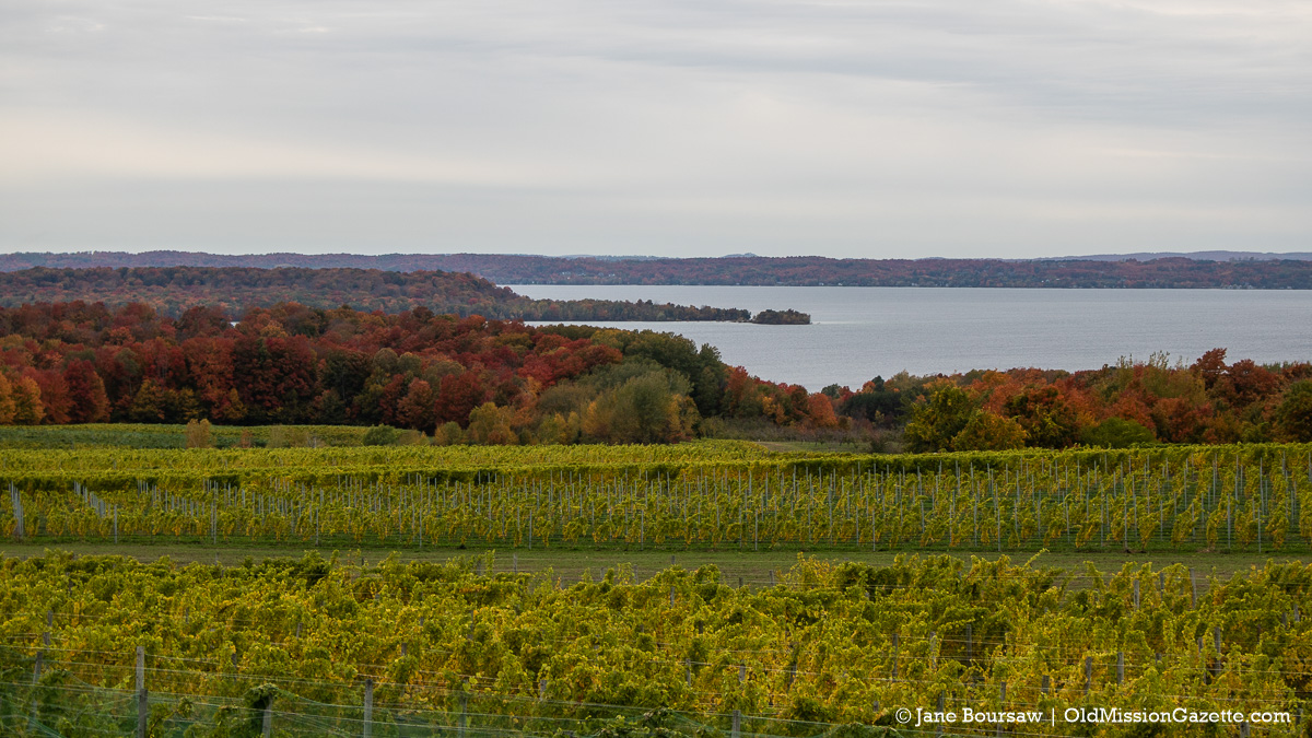 Fall Colors on the Old Mission Peninsula; Center Road at Winery Hill (Chateau Grand Traverse) looking west towards Power Island | Jane Boursaw Photo