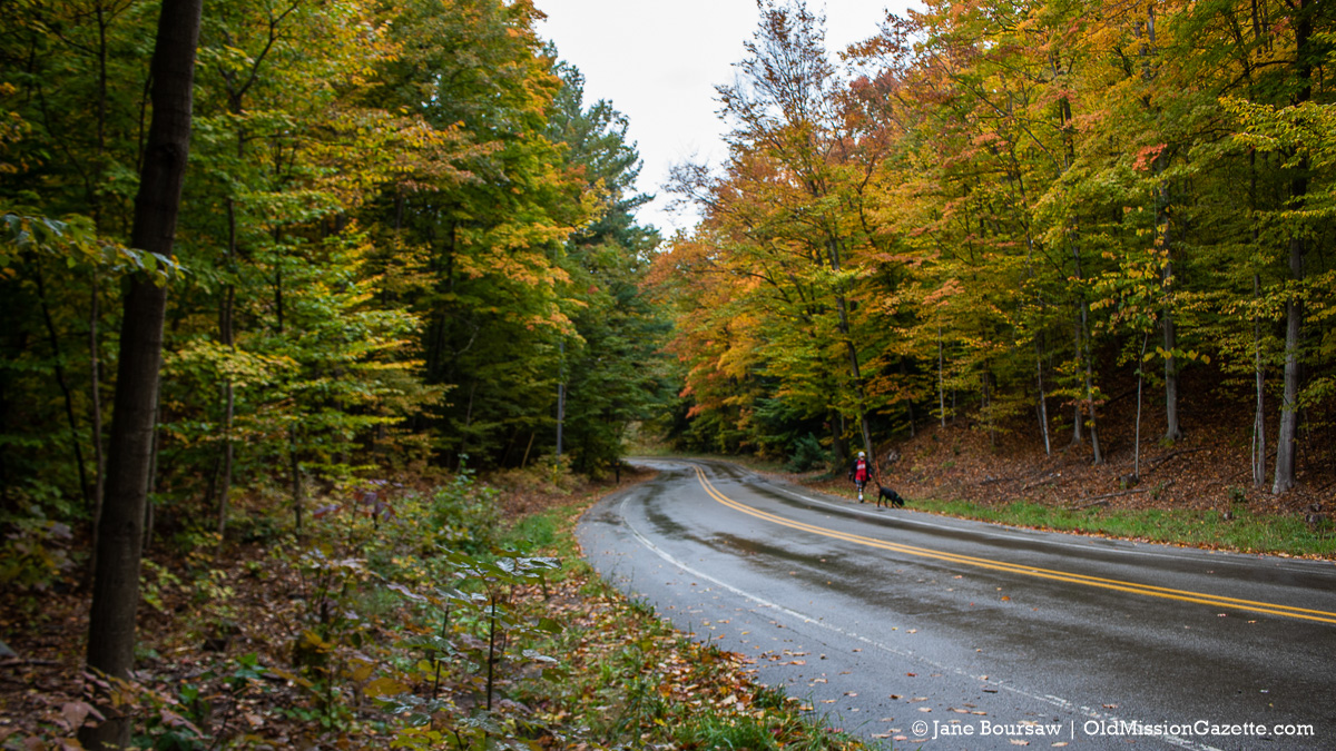 Fall Colors on the Old Mission Peninsula; Wilson Road looking west | Jane Boursaw Photo