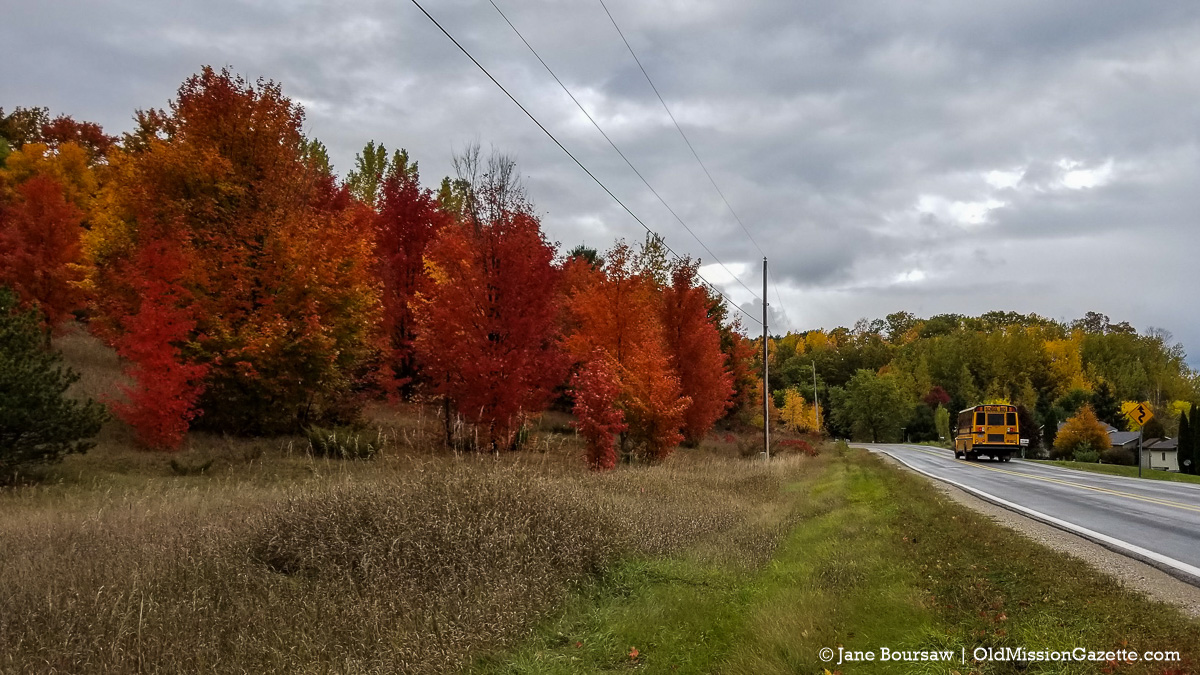 Fall Colors on the Old Mission Peninsula; Smokey Hollow Road from the Bluff Road intersection | Jane Boursaw Photo
