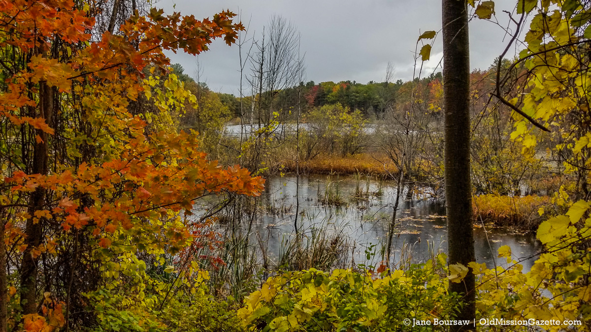 Fall Colors on the Old Mission Peninsula; Bagley Lake from Ridgewood Road | Jane Boursaw Photo