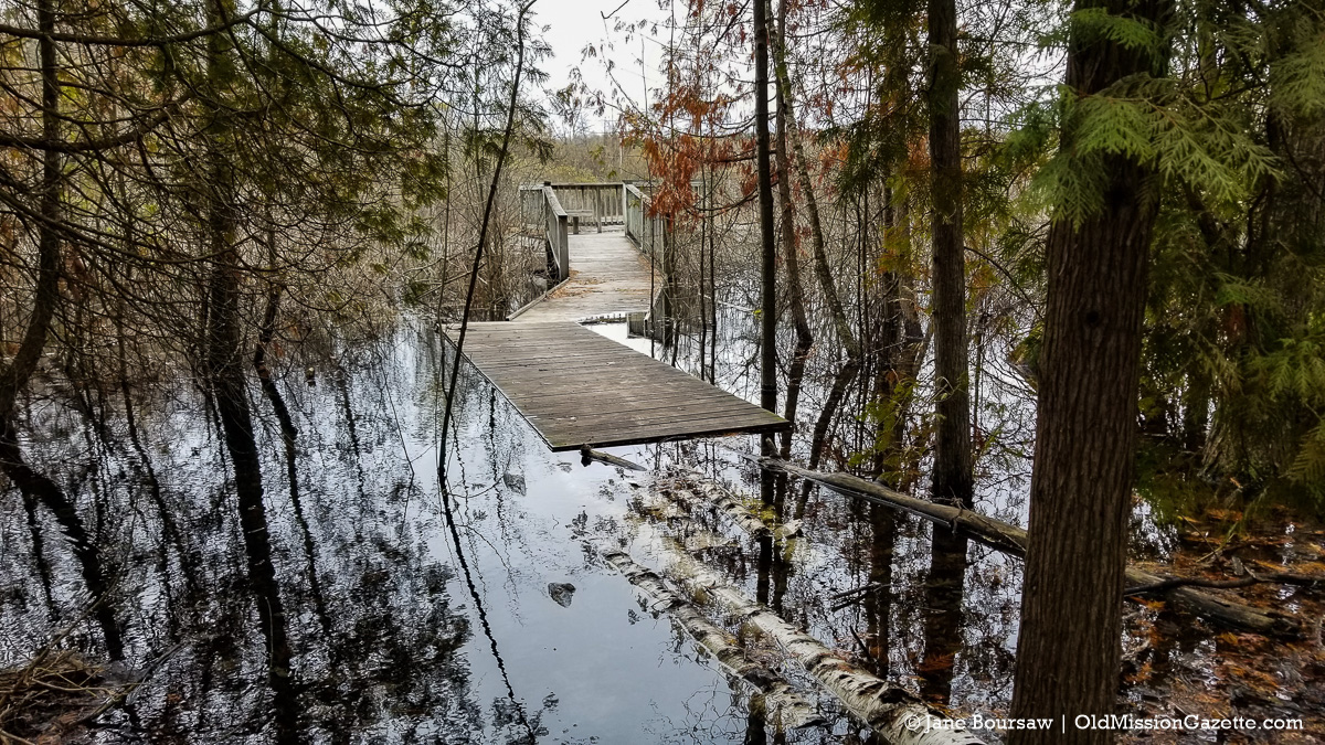 Pyatt Lake Trail on the Old Mission Peninsula Gets Universally Accessible Upgrades | Jane Boursaw Photo