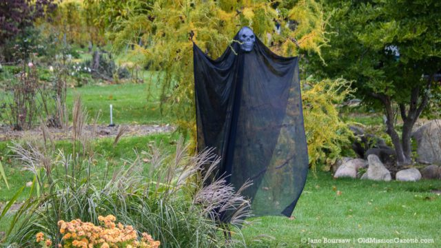 A spooky ghoul at Hooper's Farm Gardens on Kroupa Road | Jane Boursaw Photo