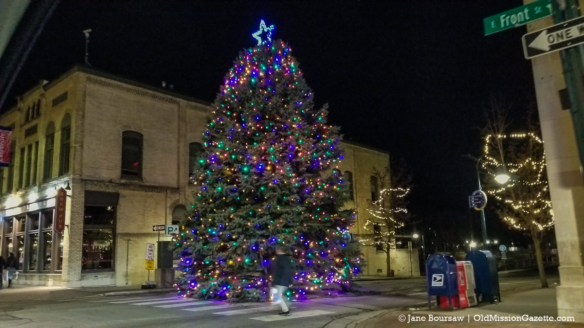 Holiday Lights 2020; Christmas Tree in Downtown Traverse City, Michigan | Jane Boursaw Photo