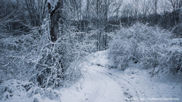 Tim and Jane's Snowy Driveway on Bluff Road on the Old Mission Peninsula | Jane Boursaw Photo
