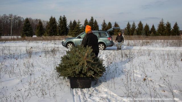 Don Switzer hauls a Christmas Tree back to the Gazette-Mobile   Jane Boursaw Photo