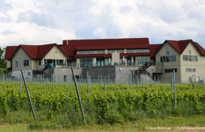Bonobo Winery on the Old Mission Peninsula | Jane Boursaw Photo