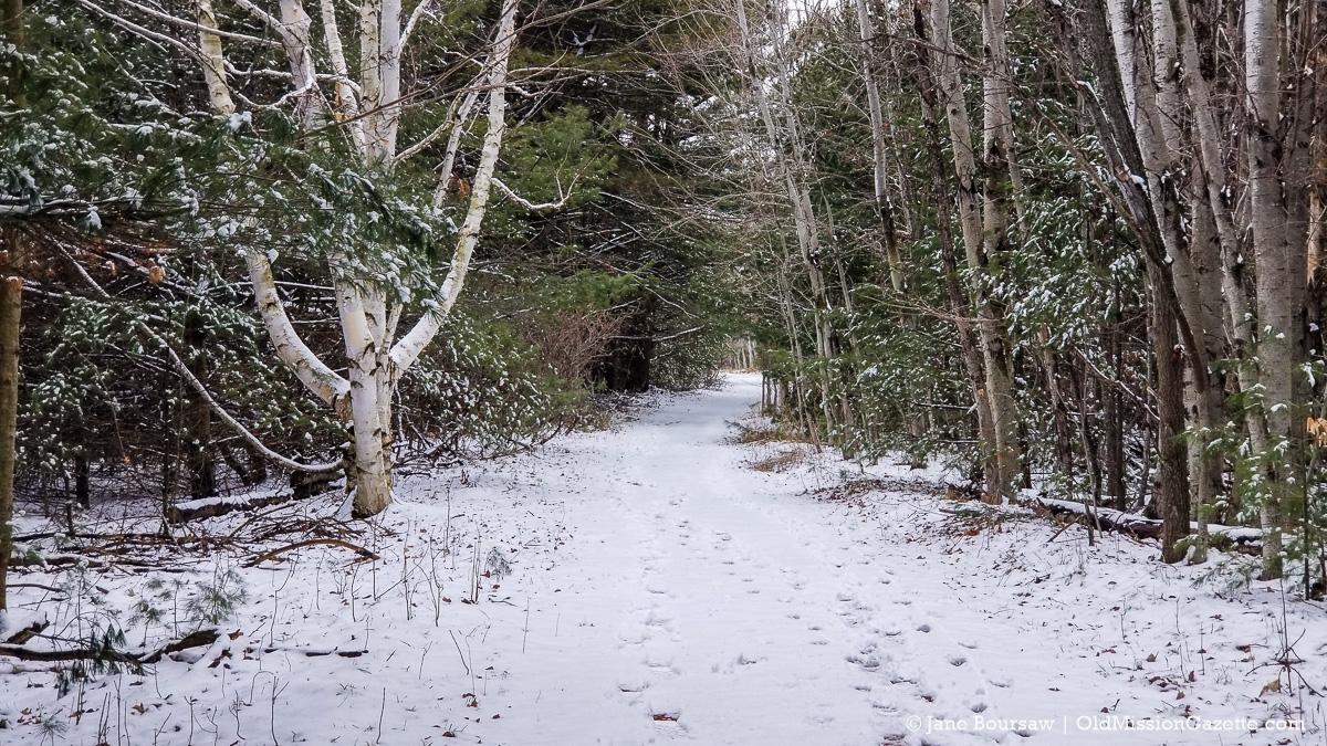 Ridgewood Trail 3 16 21 1