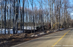Tree-Cutting on Smokey Hollow Road north of 2 Lads Winery | Jane Boursaw Photo