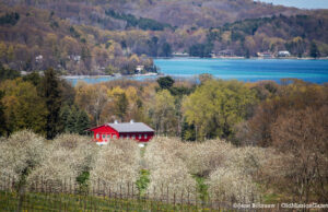 Carpenter Hill on the Old Mission Peninsula | Jane Boursaw Photo