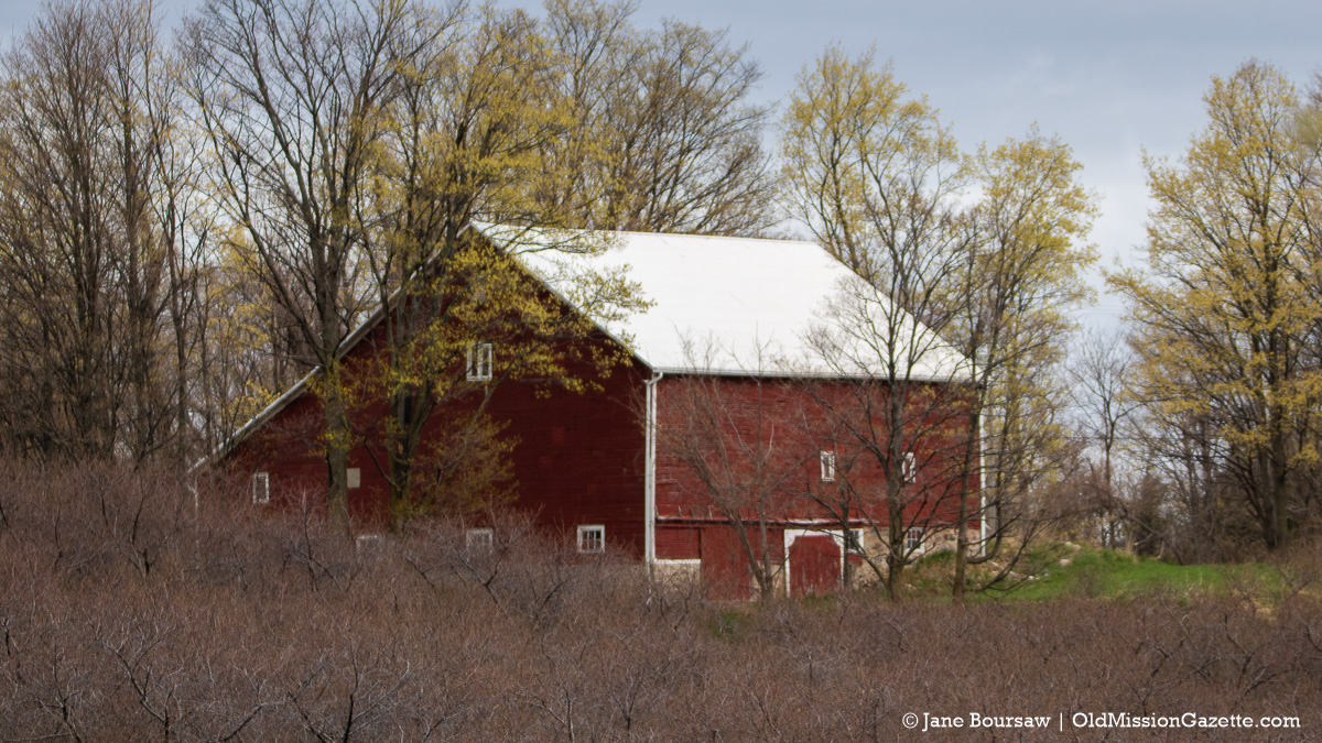 Johnson Farms Barn on Center Road (from the Umlor Farm)   Jane Boursaw Photo