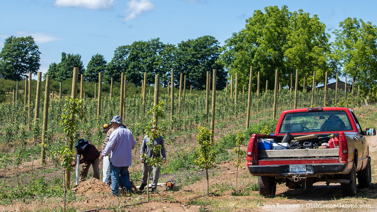 Farm workers at Johnson Farms | Jane Boursaw Photo