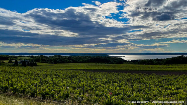 Winery Hill on the Old Mission Peninsula   Jane Boursaw Photo
