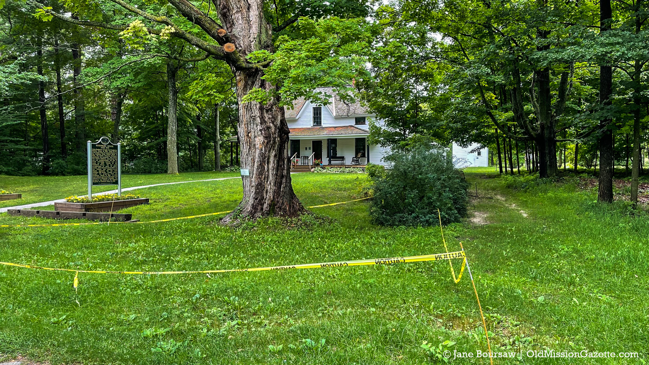 Yellow tape keeps visitors to the Dougherty House from parking under a precarious branch   Jane Boursaw Photo