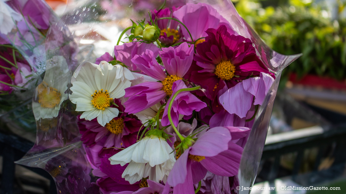 Flowers at Holman's Farm Stand on Grand Street in the Village of Old Mission | Jane Boursaw Photo