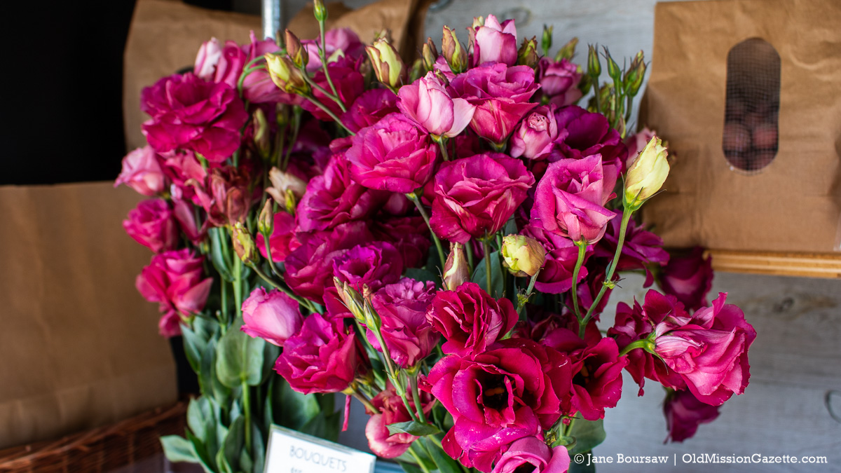 Flowers at Local Yokels Farm Stand; Center Road on the Old Mission Peninsula | Jane Boursaw Photo