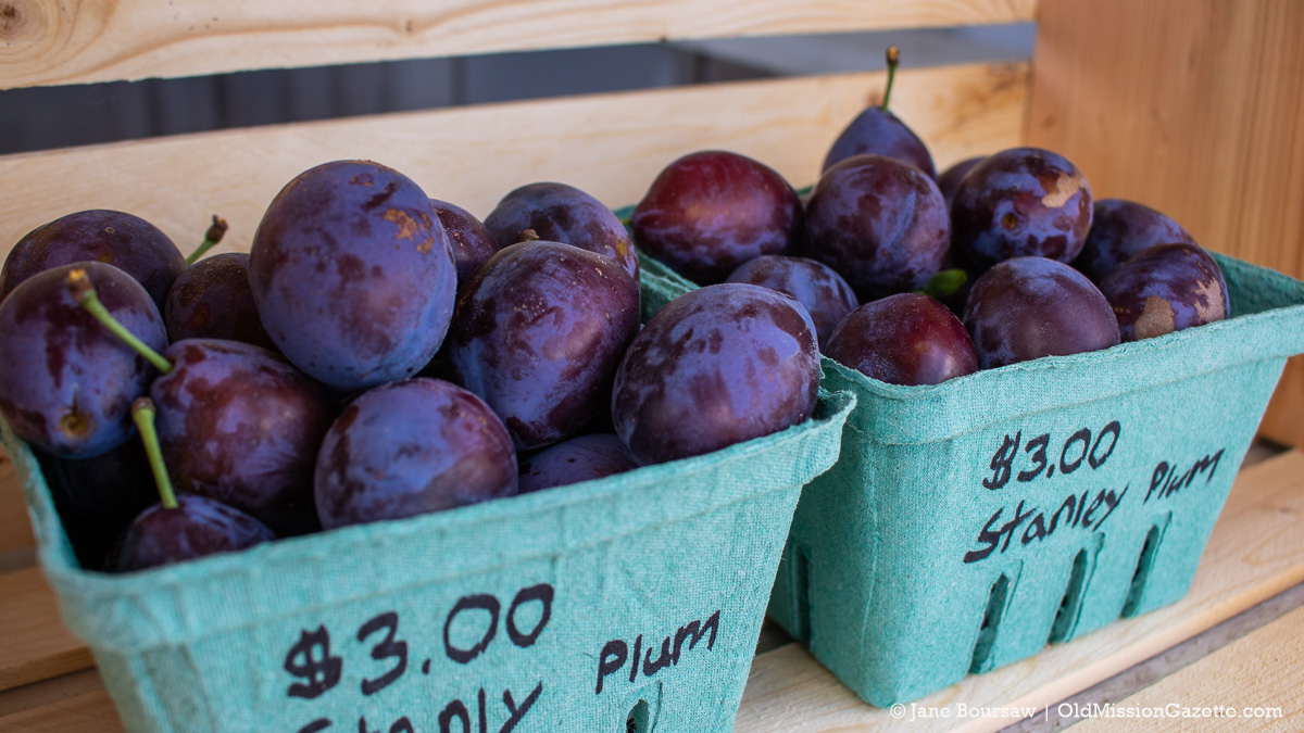 Stanley Prunes (or Plums, you make the call) at Walter and Ward Johnson Co. Farm Stand; Center Road on the Old Mission Peninsula | Jane Boursaw Photo