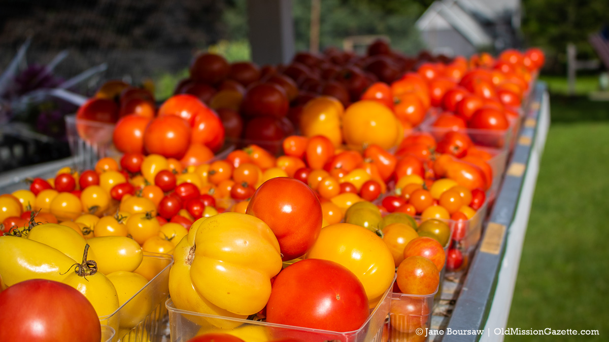 Tomatoes at Holman's Farm Stand on Grand Street in the Village of Old Mission | Jane Boursaw Photo